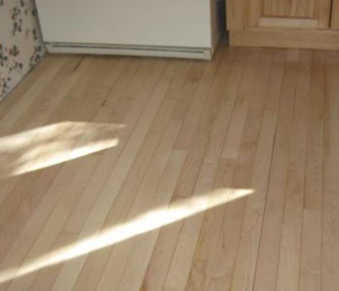 How to remove mold growing on wood floors? After