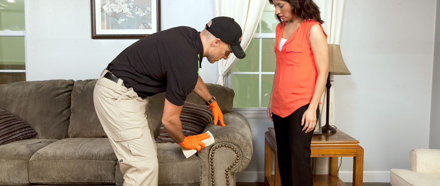 Franklin, NC carpet upholstery cleaning